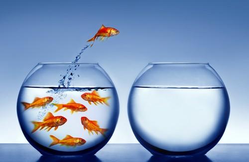 افزایش اعتماد به نفس-چالش
